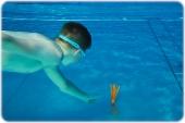 Sommer-Schwimmtraining_19